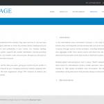 Services – Voxmage